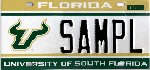 University of South Florida Redesign!
