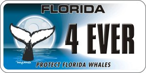 Protect Florida Whales